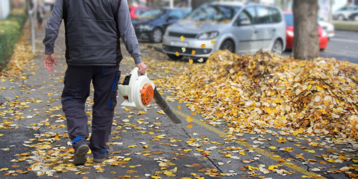 A Glance At The Best Leaf Blowers In 2018
